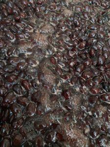黒豆をコトコト煮てます。
