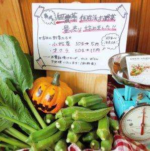 無農薬野菜量り売り